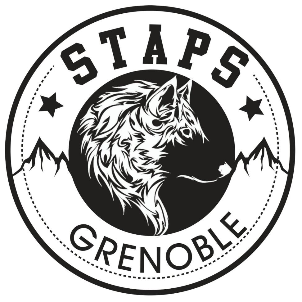 logo staps